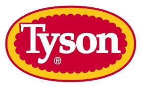 Tyson Article @ Sintel Systems