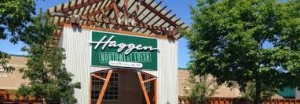 Haggen in Gelsons bids for closing haggen stores in california POS article